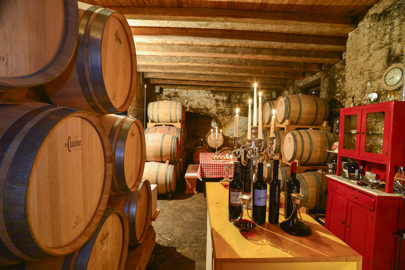 Wine cellar of Dubokovic winery