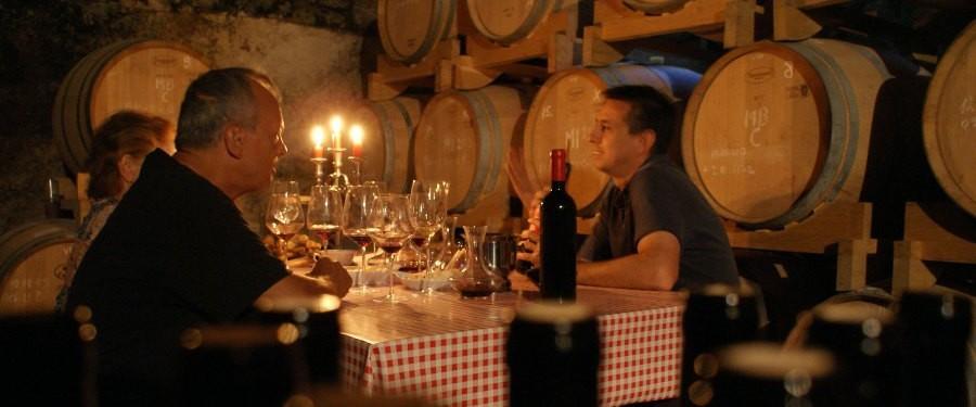 Wine & Gastornomy